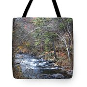 Cold Mountain Stream Tote Bag