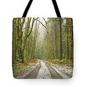 Cold Paths Tote Bag
