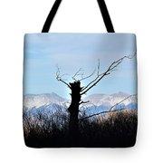 Cold Reach Tote Bag