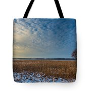 Cold Serenity Tote Bag by Julis Simo
