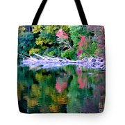 Cold Spring Harbor Reflections Tote Bag