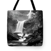 Cold Spring Morning At Kaaterskill Falls II Tote Bag
