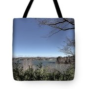 Cold Windy Morning Tote Bag
