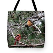 Cold Winter Day Tote Bag