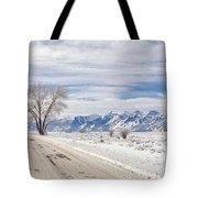 Cold Winter Day Tote Bag