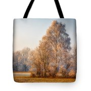 Cold Winter Evening In The Valley Tote Bag
