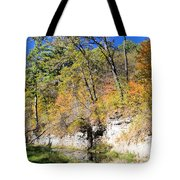 Coldwater Trout Stream Tote Bag