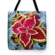 Coleus And Dusty Miller Tote Bag