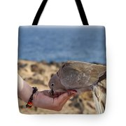 Collared Dove Feeding From A Hand Tote Bag