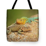Collared Lizards Tote Bag