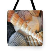Collection Of Shells Tote Bag