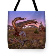 Coloful High Mountain Splendor Tote Bag
