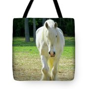 Colonial Horse In Williamsburg Tote Bag