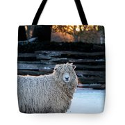 Colonial Sheep In Winter Tote Bag