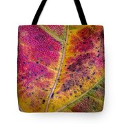 Color And Texture Tote Bag