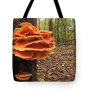 Color In The Woods Tote Bag