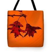 Color Me Autumn 2 Tote Bag