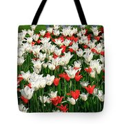 Color Mixing Tote Bag