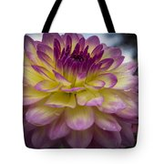 Color Starburst Tote Bag
