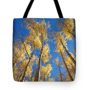 Colorado Aspen Tote Bag