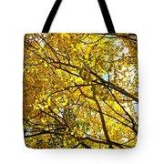 Colorado Aspens In Fall Tote Bag