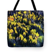 Colorado Autumn #5 Tote Bag
