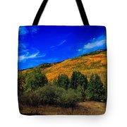 Colorado Beauty Tote Bag