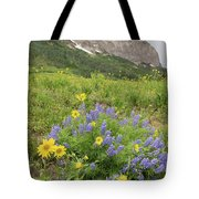Colorado Color #4 Tote Bag