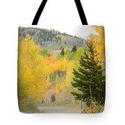 Colorado Colors Tote Bag