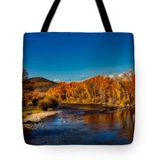 Colorado Cottonwoods In Autumn Tote Bag