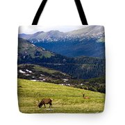 Colorado Elk Tote Bag