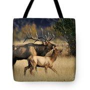 Colorado Elk  Tote Bag