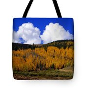 Colorado Fall 2 Tote Bag