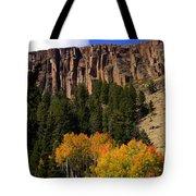 Colorado Fall 4 Tote Bag