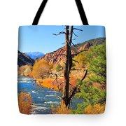 Colorado Fall Tote Bag