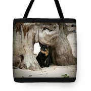 Colorado Giant Tortoise Tote Bag