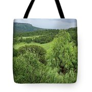Colorado Green Tote Bag