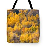 Colorado High Country Autumn Colors Tote Bag