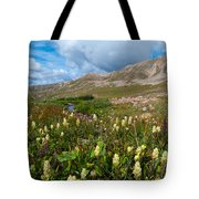 Colorado Late Summer Splendor Tote Bag