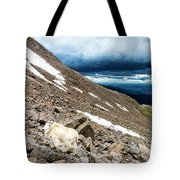 Colorado Mountain Goat Tote Bag