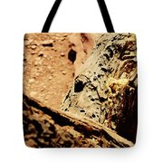 Colorado National Mounument Tote Bag