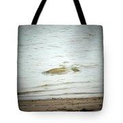 Colorado Net Fishing Tote Bag