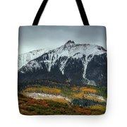 Colorado Seasons Tote Bag