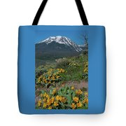 Colorado Spring Wildflower And Mountain Portrait Tote Bag by Cascade Colors