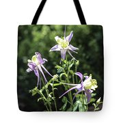 Colorado State Flower Tote Bag