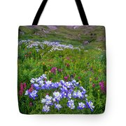 Colorado Sunrise - American Basin Tote Bag by Aaron Spong