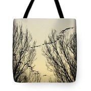 Colorado Sunsets 1 Tote Bag