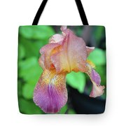 Colored Iris  Tote Bag