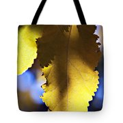 Colorful Autumn Leaf Tote Bag