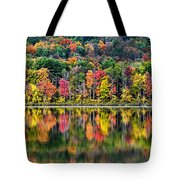 Colorful Autumn Reflections Tote Bag